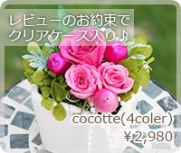 cocotte(4coler)¥2,980