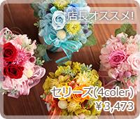 セリーズ(4coler)¥3,473
